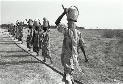 Exposition l'« Afrique en regards »